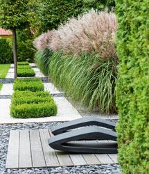 Garten- & Terrasenplanung/Innenraumbegrünung/Dekoration