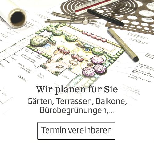 In der Starkl Gartengestaltung planen wir private Gärten, Terrassen, Dachgärten, öffentliche Anlagen, Innenraumbegrünung und Bürobegrünung
