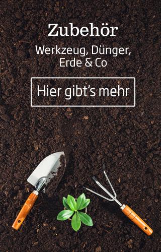 In den Starkl Stellenangeboten zeigen wir Ihnen alle Stellen als Gartenplaner, Gartenarchitekt, Garten und Landschaftbauer und Gärtner.
