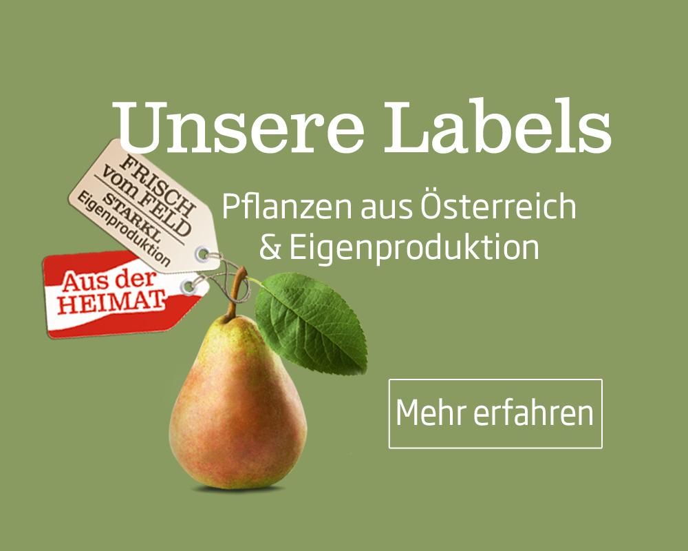 Diese Pflanzen und Bäume werden in Österreich auf den Feldern von Starkl produziert und stammen aus Eigenproduktion.