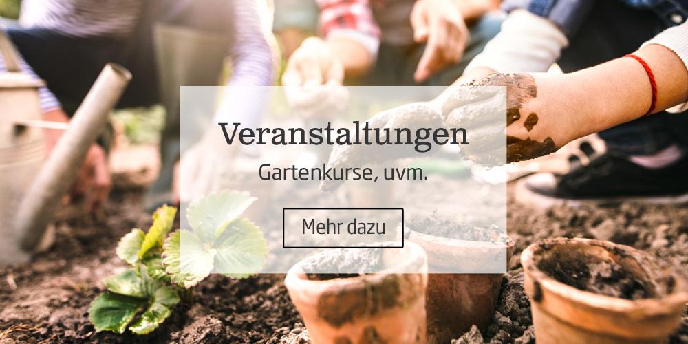 In unseren Starkl Gartenveranstaltungen finden Sie Gartenschulungen, Steckkurse, Kräuterkurse, Rosenschnittkurse, Heckenschnittkurse, Gartentipps und alles für Haus und Garten.