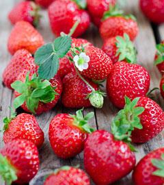 Gartencenter/Angebote/AB/erdbeeren.jpg