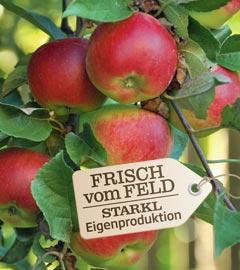 Gartencenter/Angebote/Wien/apfel_baum_fvf.jpg